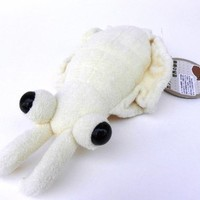 Anomalocaris Stuffed Toy Cream