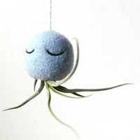 Air plant container / Octopus hanging vase / light grey green / Sea creature planter/ Choose your color!