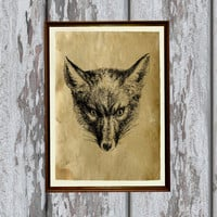 Fox illustration animal art print Old paper Antiqued decoration vintage looking 8.3 x 11.7 inches