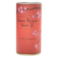 Japanese Flowering Cherry Blossom | Tree Seed Grow Kit | The Jonsteen Company