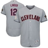 Men's Cleveland Indians Francisco Lindor Majestic Gray 2017 MLB All-Star Game Authentic Flex Base Jersey