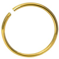 20g Surgical Steel Titanium Anodized Gold 3/8-5/16-1/4 Seamless Nose Ring Hoop - Nose Piercing Jewelry