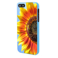 Sun Flower Shine iPhone 5 Case Framed Blue