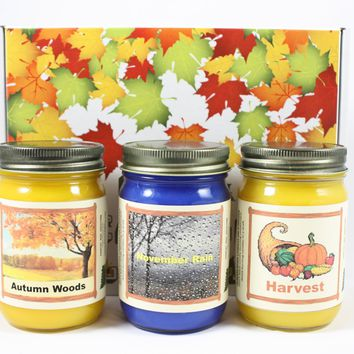 """Fall Scented Candle Collection, """"Fall Nature"""", Harvest, Autumn Woods and November Rain Scents, Three 12 Ounce Candles"""