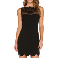 Endless Rose Lace Scalloped Dress in Black