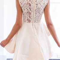 Beige Sheer Crochet Lace Panel Sleeveelss Layered Skater Dress - Choies.com