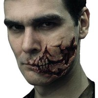 Zombie Prosthetics FX: Box 4: Ripped Face
