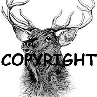 Elk Head New Mounted Rubber Stamp