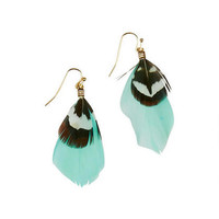 Drop Feather Earrings