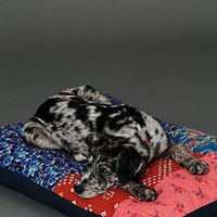 Free People Womens FP One Quilted Dog Bed