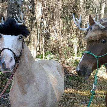 Deer Antlers for Horses - Deer Horns for Horse with Faux Fur Hat -  5 types of fur - Costume for Horses, Equine Costume