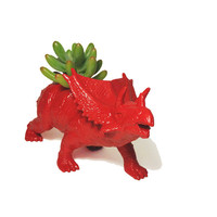 Up-cycled Red Triceratops Planter - With Succulent Plant