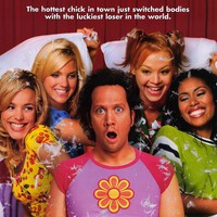 The Hot Chick 11x17 Movie Poster (2002)