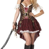 Plus Size Sexy Swashbuckler Costume