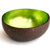 lacquer coconut shell bowl with tiny silver foils