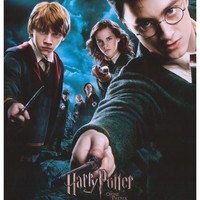 Harry Potter and the Order of the Phoenix (French) 27x40 Movie Poster (2007)