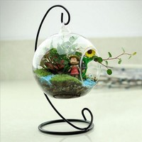 New Hot Clear Glass Round with 1 Hole Flower Plant Hanging Vase Hydroponic Container Office Wedding Decor