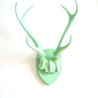 Faux Antlers Plaque Wall Hanging Rustic Modern Wall Mount Wall Decor in mint