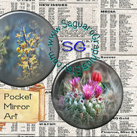 Desert Cactus Beauty Art - Digital Collage Sheet - 2.625 inch Circles for Pocket Mirrors, Weddings, Party Favors, Arts & Crafts