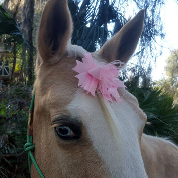 Pink Ribbon and Feather Decoration for Horse - Equine Easter Forelock, Mane or Tail Bow - Equine Easter Costume