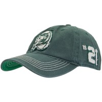 Green Bay Packers - Logo Badger Stretch-Fit Cap