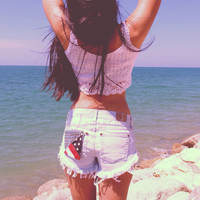 Low waisted denim shorts American flag distressed studded frayed shorts Hipster Hippie Tumblr clothing by Jeansonly