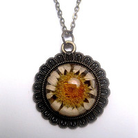 Real Flower Necklace - Resin - Daisy - Botanical - Floral