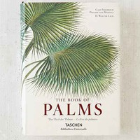 The Book Of Palms By H. Walter Lack