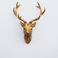 Faux Deer Head - Faux Taxidermy - The Compton - Antique Gold Resin Deer Head- Antique Gold Deer Antlers Mounted- Faux Head Wall Mount