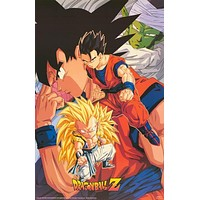 Dragon Ball Z Character Poster 22x34