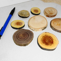 Different Wood Slices, Tree Branch Slices, Assorted Blank Tree Branch Slices, DIY Ornament Tag Wood Round, DIY Project, Rustic Wood Slices