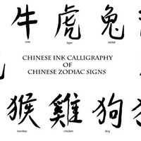 Digital Ink calligraphy of Chinese Zodiac Signs instant download for scrapbook watercolor cards new year card
