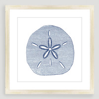 Vintage-Style Sand Dollar Sea Life Wall Art - World Market