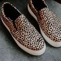 Royal Cheetah Sneakers - size 5.5 only