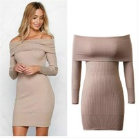 Autumn Women's Fashion Knit Pullover Sweater One Piece Dress [10203240455]