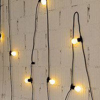 Outdoor Garland Lighting