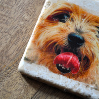 Yorkshire Terrier Coasters on travertine tile (set of 4) with resin finish