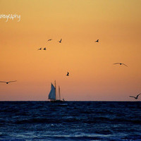 Sailing in Venice Photographic Print