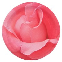 Pink Rose Petals Floral 9 Inch Paper Plate