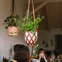 HOUSE OF RYM - Plant hanger– Hanging gardens of Rym - NEW ARRIVALS