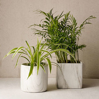 Marble Terracotta Planter | Urban Outfitters