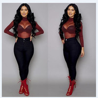 Perspective Mesh High Neck Long Sleeve Sexy Blouse