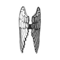 Winged Ring