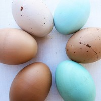 Easter eggs- wooden heritage breed chicken egg- Holiday Decoration -eco friendly- Waldorf Montessorri toy