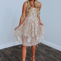 Shimmy & Shake Dress: Nude/Gold