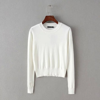 Winter Slim Round-neck Knit Tops Bottoming Shirt [6332300228]