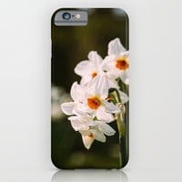 White Daffodil Flowers iPhone & iPod Case by Pati Designs