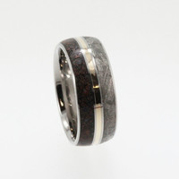 Meteorite Wedding Band, Dinosaur and Gold Ring