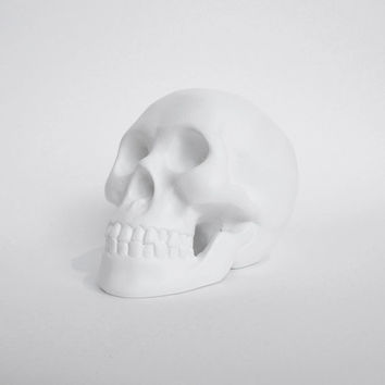 Skull Sculpture, Ghost Skull, Skull Figurine, Skull Candle Holder, Skull, White Skull, Skull Figurine
