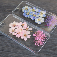 iPhone 6 case, natural daisy, Real pressed flowers Phone case, iPhone 6 Plus, iPhone 5S case, iPhone 5c case, samsung s5 case Note3 case-F24